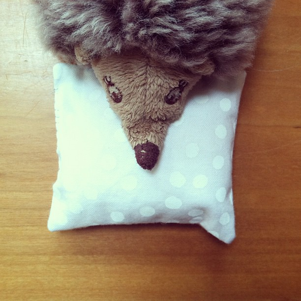 Hedgehog Pillow Pet